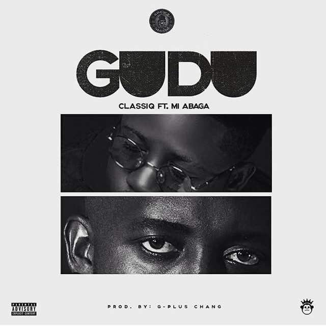 ClassiQ MI Guudu